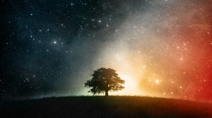 tree-meditation-insight-tharyn